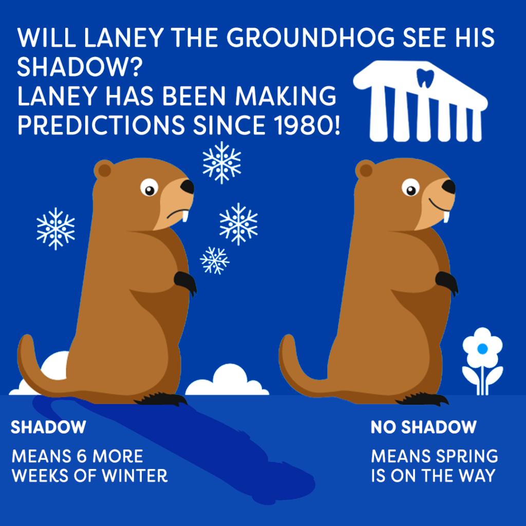 Groundhog day Laney